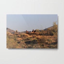 The Bachelors Metal Print
