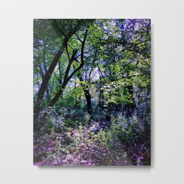 Pleasure of the Pathless Woods Metal Print