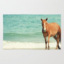 Wild Mustang of Carova, NC Rug