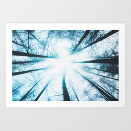 TEXTURE of TREES Art Print