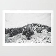 MONTANA BEAUTY in the BLACK & WHITE Art Print