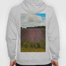 Cotswold Lavender Hoody