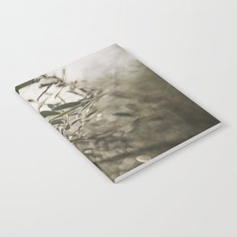 Olive Tree Leaves in the Mist Notebook
