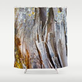 Relic of the Forest Shower Curtain