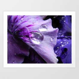 Perfection in Purple Art Print
