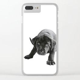 Cute Black  labrador puppy Clear iPhone Case