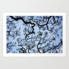 Under the Tree - Day Art Print