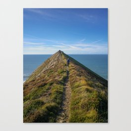 HIGHER SHARPNOSE POINT MORWENSTOW CORNWALL Canvas Print