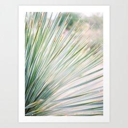 Agave Print (close-up) Art Print