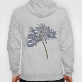 Blue Lily Hoody