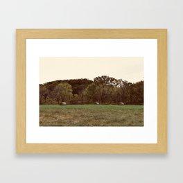 Three Lonely Haybales Framed Art Print