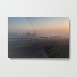 Horses in morning fog Metal Print