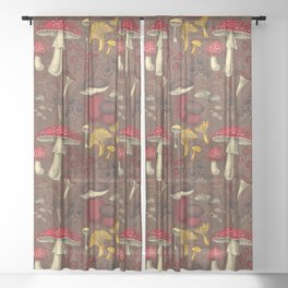 Wild mushrooms on brown  Sheer Curtain