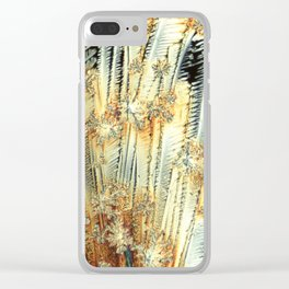 Vitamin C Sources for Happiness Clear iPhone Case