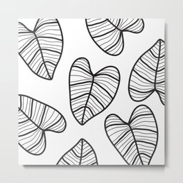 Taro Leaf with White Background Metal Print