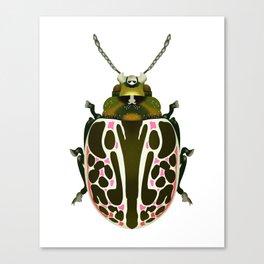 Green, White, Pink Beetle Canvas Print