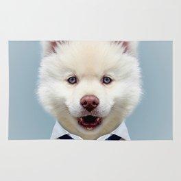 Fashion dog Rug