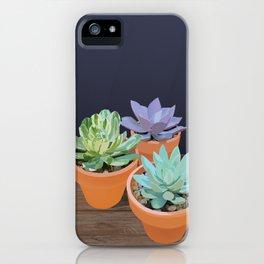 Trio of Small Succulents iPhone Case