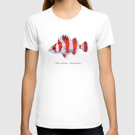 Flag Rockfish T-shirt