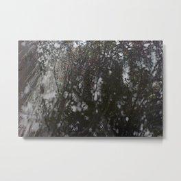 the garden/ shadows (the lisbon series) Metal Print