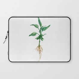 Soybean Laptop Sleeve