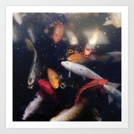 Colorful Koi Fish Art Print