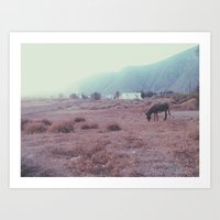donkey Art Prints featuring Donkey by Rebecca Cote