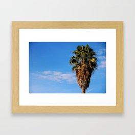 La Brea Palm Framed Art Print