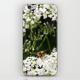 Yummie 01  (Iphone) iPhone Skin