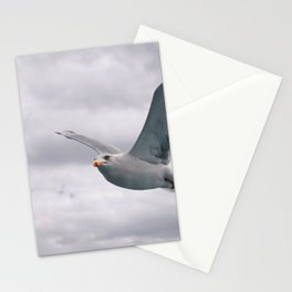 flying white seagull Stationery Cards
