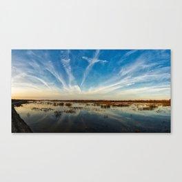 san joaquin wildlife reserve Canvas Print