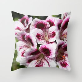 Purple Geraniums Flowers Throw Pillow