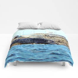 Seal Family Comforters