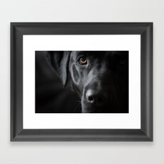 Out of the Darkness Framed Art Print