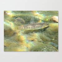 trout Canvas Prints featuring Trout by turco napoletano
