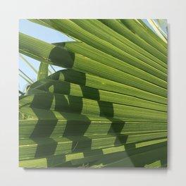 Sophisticated Fan Palm Leaf Exotic Geometric Photo Metal Print