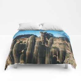 Cactus Country Comforters