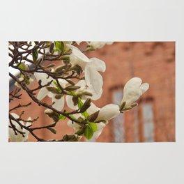 Amazing nature of white magnolia Rug