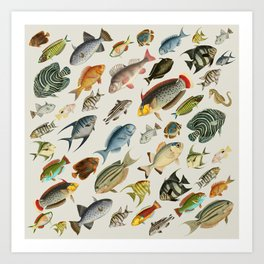 vintage fish swim on bone Art Print
