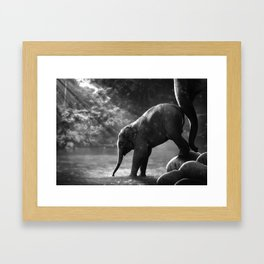 Baby elephant with mother Framed Art Print