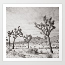 Joshua Tree Grey By CREYES Art Print