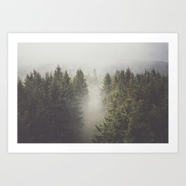 My misty way - Landscape and Nature Photography Art Print