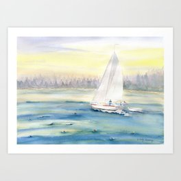 Morning In Maine  Art Print