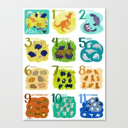 (Some) Animals of Australia Canvas Print