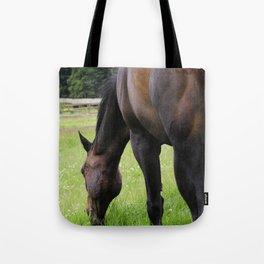Grazing horse Tote Bag
