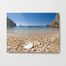 Shell Beach Metal Print