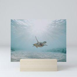 sea turtle iii Mini Art Print