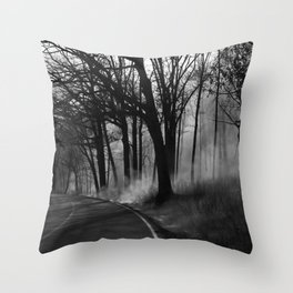 Blazing Trail Throw Pillow