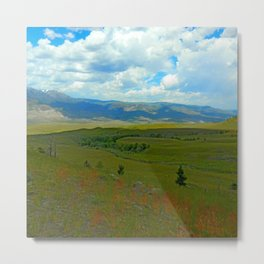 Shaded by the Clouds Metal Print