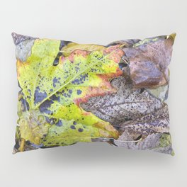 Rainy Leaves. Forest Dreams Pillow Sham